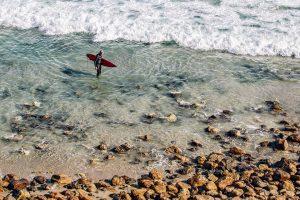 loi surf